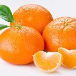 mandarina3_2